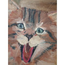 Chat riant 40*29 cm