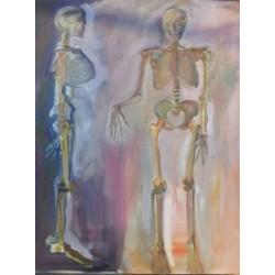 Squelette face et profil
