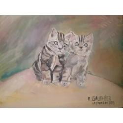 Deux petits chatons aux...